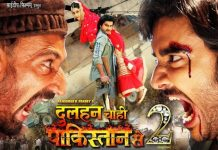 Bhojpuri Movies Box Office Collections