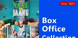 Nannu Ki Jaanu Box Office Collection