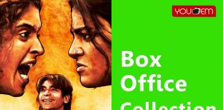 Pataakha-Box-Office-Colection