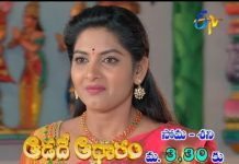 Pallavi Plays Lead Role Adade Aadharam Daily Serial