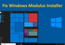Fix Windows Modulus Installer